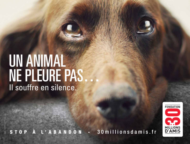 Campagne 30 Millions d'Amis 2012